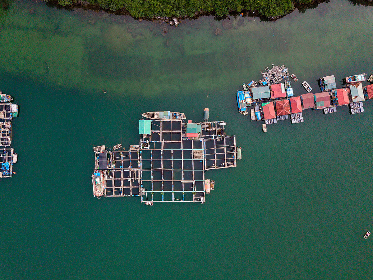 Bird's eye view of a floating fishing village in Halong Bay