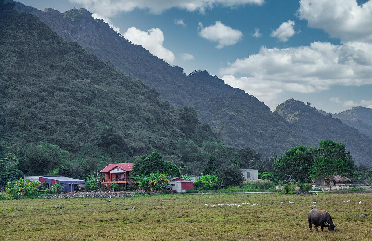 Experience the hidden village of Viet Hai on Cat Ba Island