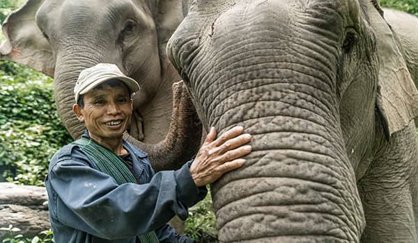 Mahout Singh with his elephant, Mae Buon Ma